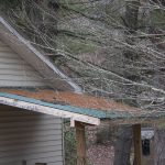 Why You Should Clean Your Roof and Gutters on Your House